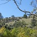 Small photo of Adelaide Hills