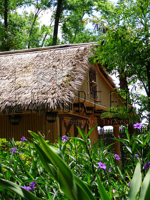 PrivateCoffeeHouse.FL.Dominica
