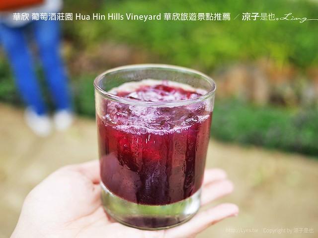 華欣 葡萄酒莊園 Hua Hin Hills Vineyard 華欣旅遊景點推薦 1