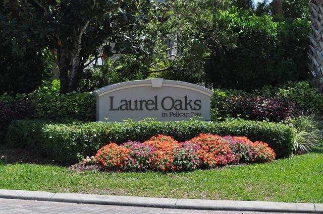 Laurel Oaks