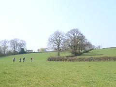 across a field