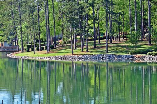 spring southcarolina lakemurray irmo nikond700 photogeorge