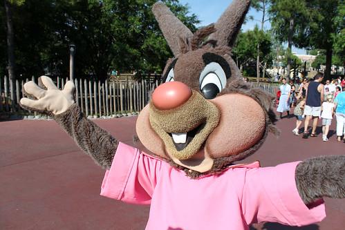 Brer Rabbit leaves the Frontierland Hoedown