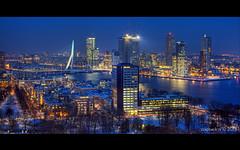 Blue Monday / Rotterdam / Euromast / Wallpaper