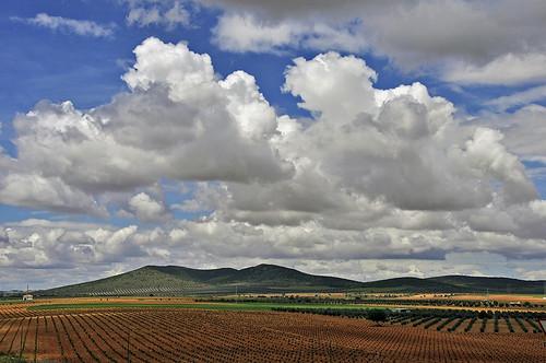 sky primavera clouds atardecer evening spring viña vineyards cielo nubes grapes ciudadreal lamancha montes uvas mounts castillalamancha viñedos villartadesanjuan marcoantoniolosas