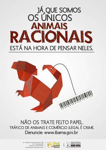 cartaz tráfico de animais by naum alves