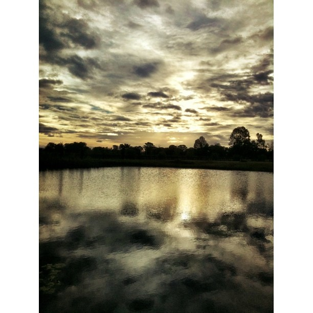 Mudgee Reflections