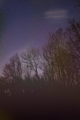 trees sky cloud motion night rural stars pennsylvania pa plumsteadville