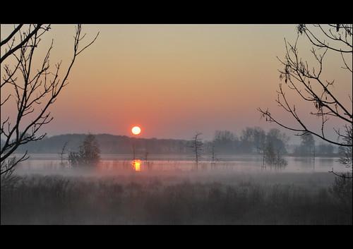 mist nature fog sunrise landscape natuur friesland landschap leeuwarden fryslân zonsopkomst nieuwewielen
