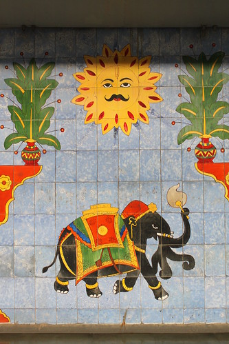 india art animal sunrise