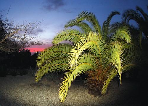 "sunset vista bonaire mygearandme mygearandmepremium mygearandmebronze ""flickrtravelaward"""