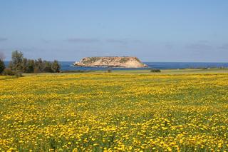 Geronisos Island, Cape Drepano, Cyprus