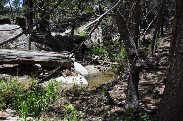 Idyllwildfarm Blog: Idyllwild, Hurkey Creek, Lake Hemet, CA 071