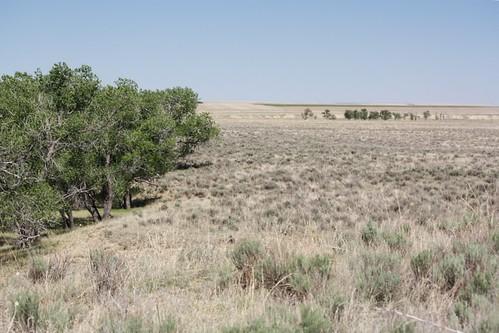 Sand Creek (Massacre) Battle Ground of November 29, 1864 - Sand Creek Massacre Historic Site, Colorado