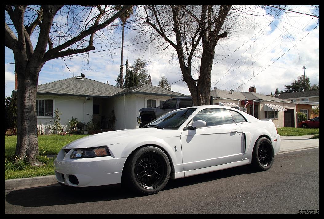 CA FS/FT: 2004 Oxford White Terminator w/ Mods ...