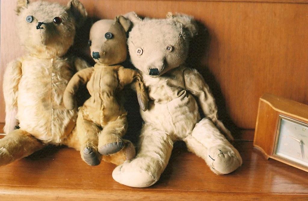 Thumbnail for Teddy Bear S Picnic - ABC Open