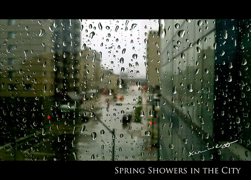 105/365: Spring Showers in the City