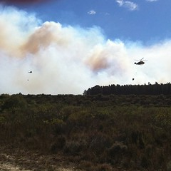 2 crop-duster planes & 3 helicopters at Helderberg Nature Reserve fire