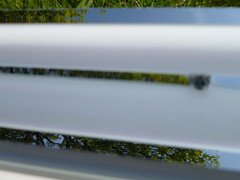 Green reflections - Somar Eluma Low-level Series II