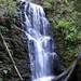 Berry-Creek-Falls-2011-04-30