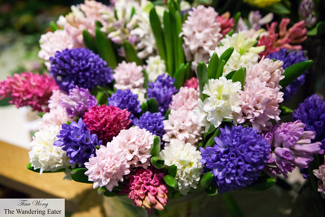 Aromatic hyacinths in the floral department