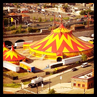 The circus is in town!
