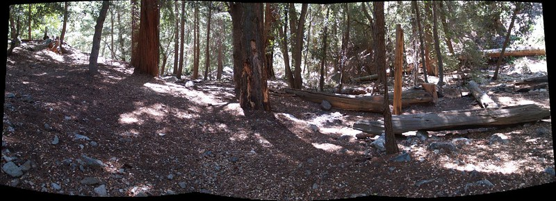 Panorama shot of the Third Crossing Campsite. Plenty of room for tents here, and the stream is right next door.