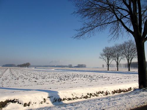 canonixus230hs hoogezwaluwe nederland snow winter