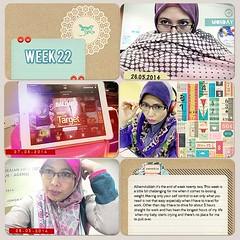 Week22a-web