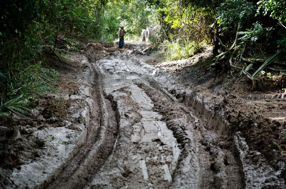 Un obrero observa el camino fangoso mientras trabaja en el rellenado con tierra seca sobre el barro, para rehabilitar el paso hacia los pueblos que quedaron aislados por los cortes de caminos. (Elton Núñez)