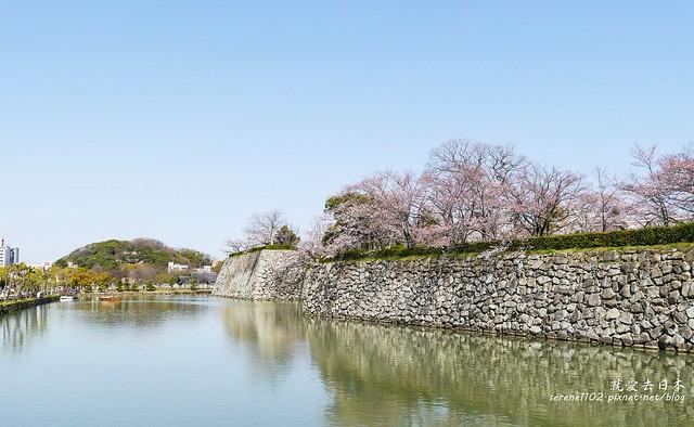 0331D6姬路、神戶_57