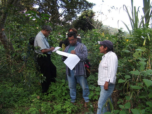 Organic certifiers, like those pictured above auditing an operation in Mexico, are a vital part of a complete and scalable system that supports organic integrity. While they conduct investigations as the need arises, they regularly audit operations from top to bottom, examining every component of the farm or facility as part of their on-site inspections.  About a hundred certifying agents help oversee nearly 29,000 USDA organic operations across the world.