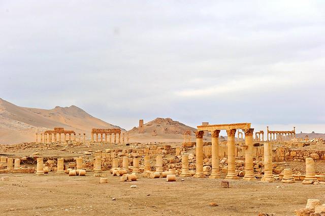 348 Palmyra (Syria)