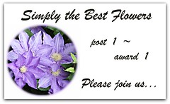 Simply the Best Flowers