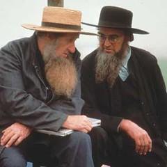 Beard-AMISH2 amish beard