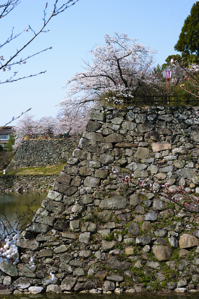 Nara - Koriyama Castle Remains