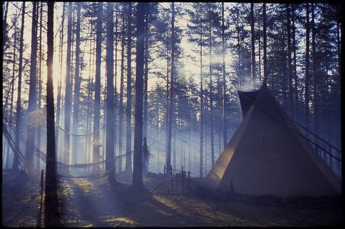 film fog slide tipi утро туман дым olympusmjuii слайд systo плёнка fujifilmprovia400x систо типуха