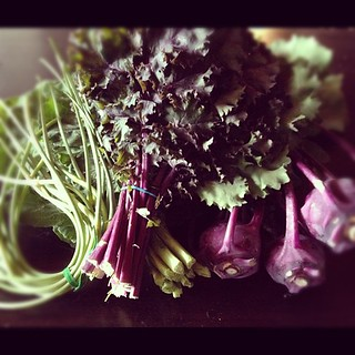 The prettiest veggies from @soltoseedfarm. #purpleandgreen #supportyourlocalfarm