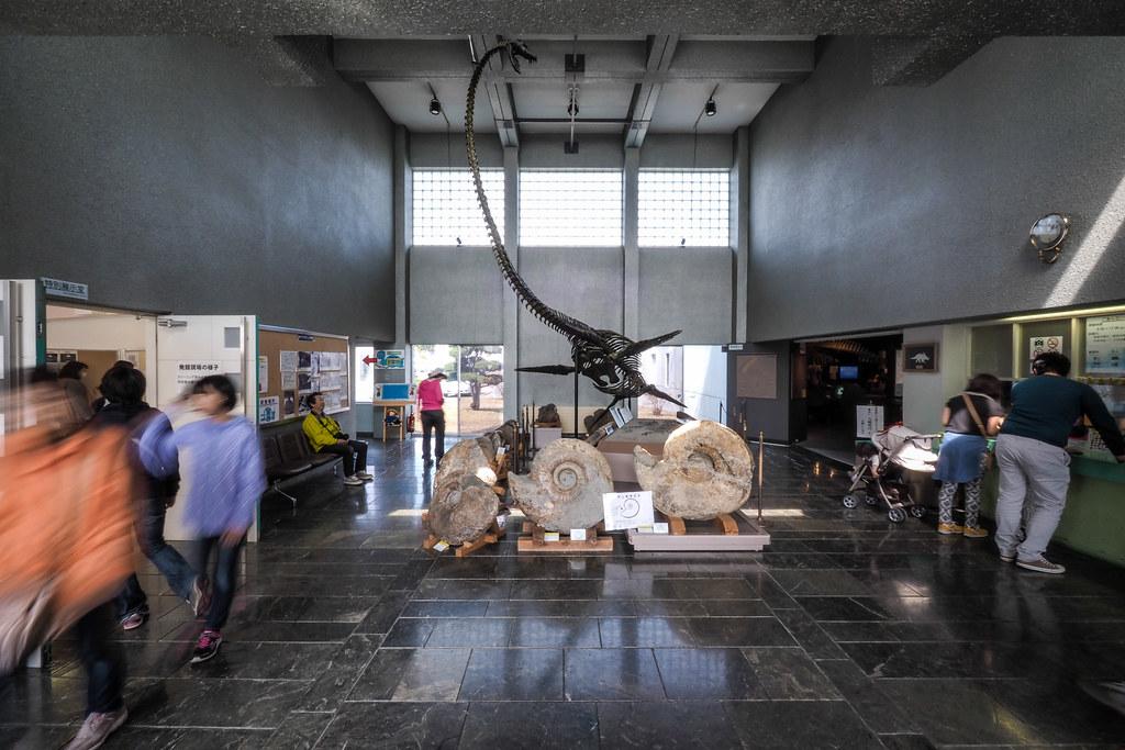 Dinosaur skeletons in Hobetsu Museum, Hokkaido, Japan