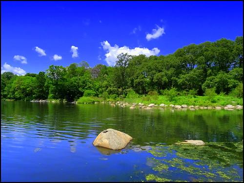 newyork reflection brooklyn spring image prospectpark dmitriyfomenko spring122014