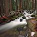 Bridalveil Creek Long Exposure by Dave Toussaint (www.photographersnature.com)