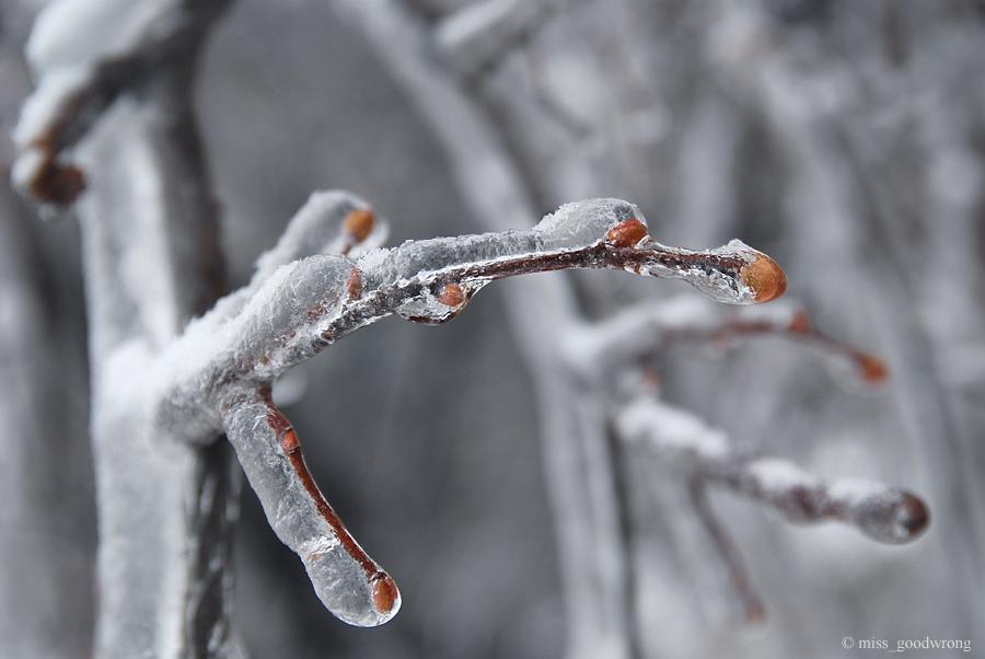 Winter 09