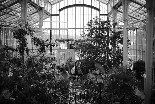 The Winter Garden, Helsinki by Rollofunk