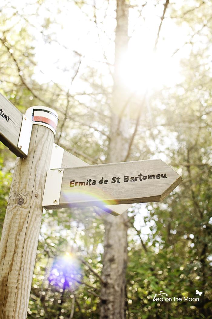 Montsant Sant Bartomeu