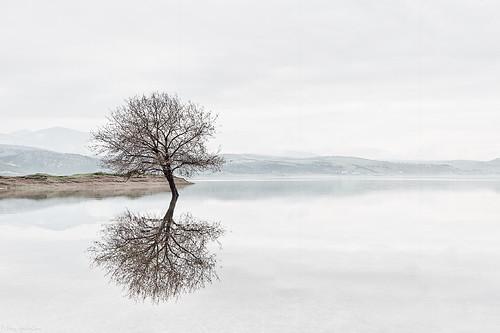 [フリー画像素材] 自然風景, 樹木, 河川・湖, 風景 - ギリシャ ID:201205201800