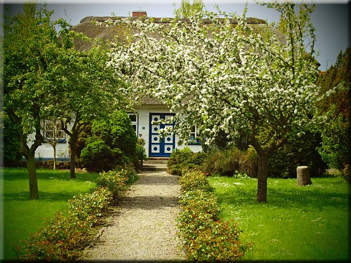 The charming house in the springtime