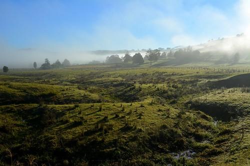 winter sunlight fog landscape countryside bend foggy earlymorning australia nsw meander australianlandscape gully ruralaustralia northernrivers valleyfog rurallandscape numulgi morninglandscape cooperscreekvalley