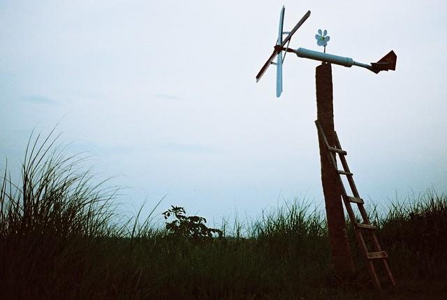 * đôi khi trốn khỏi buổi chiều/ trầm ngâm ngồi nghĩ những điều hồn nhiên ..