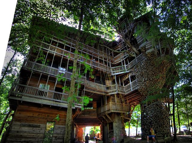La plus grande maison dans les arbres du monde !