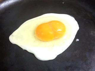Twin Egg
